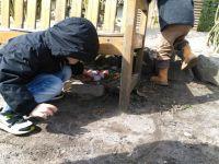 Weiterlesen: Osternester bauen und Eier suchen